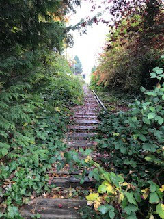 The entrance to the Snohomish Train Tressel.