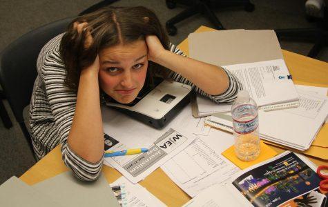 School Stress Subsistence