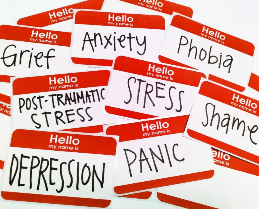 All of the types of mental health issue. Credit: educationnews.com