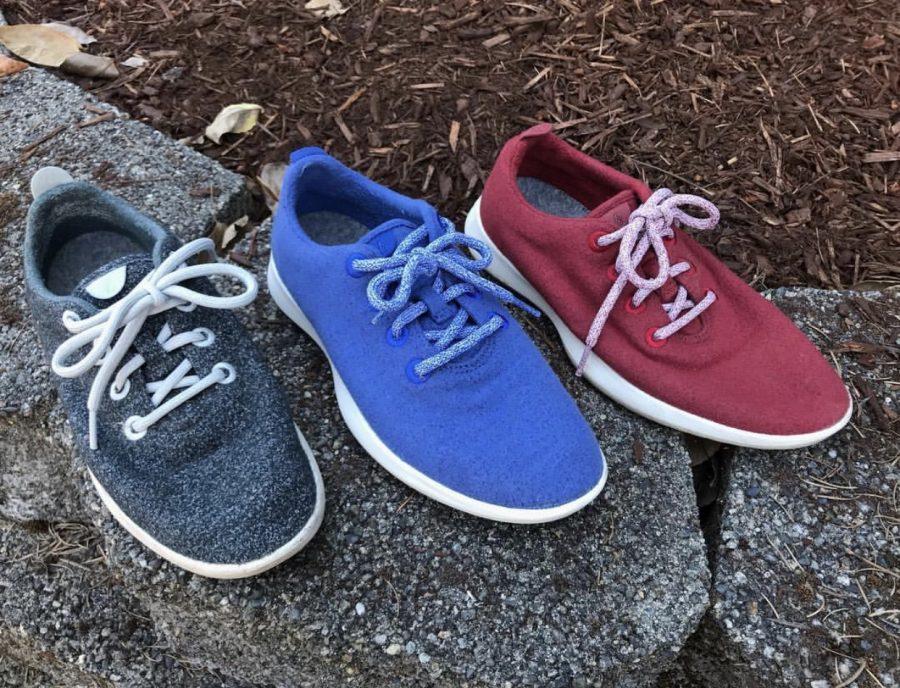 Allbirds%2C+AKA+the+Best+Shoe+Ever