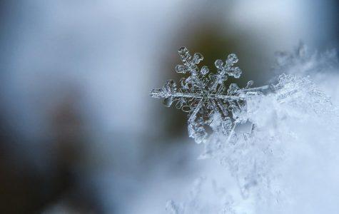 Winter Activities Near Snohomish