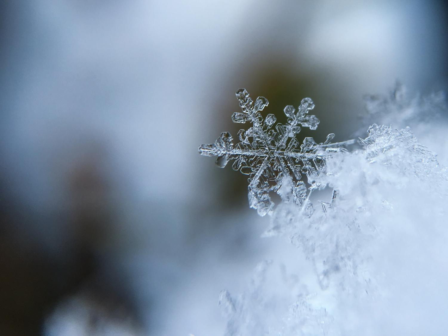 Close up photo of a snowflake by Aaron Burden